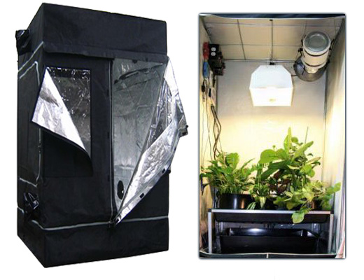 Grow room  sc 1 st  A Facebook Useru0027s blog - Typepad & Indoor Hydroponic Gardening - A Facebook Useru0027s blog